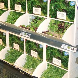 Wellplast®- miljövänlig matförvaring salladsbuffe